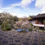 Dr. Sun Yat-Sen Classical Chinese Garden